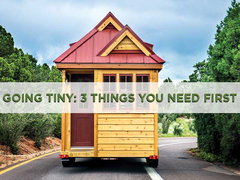 3 Things You Need To Buy A Tumbleweed